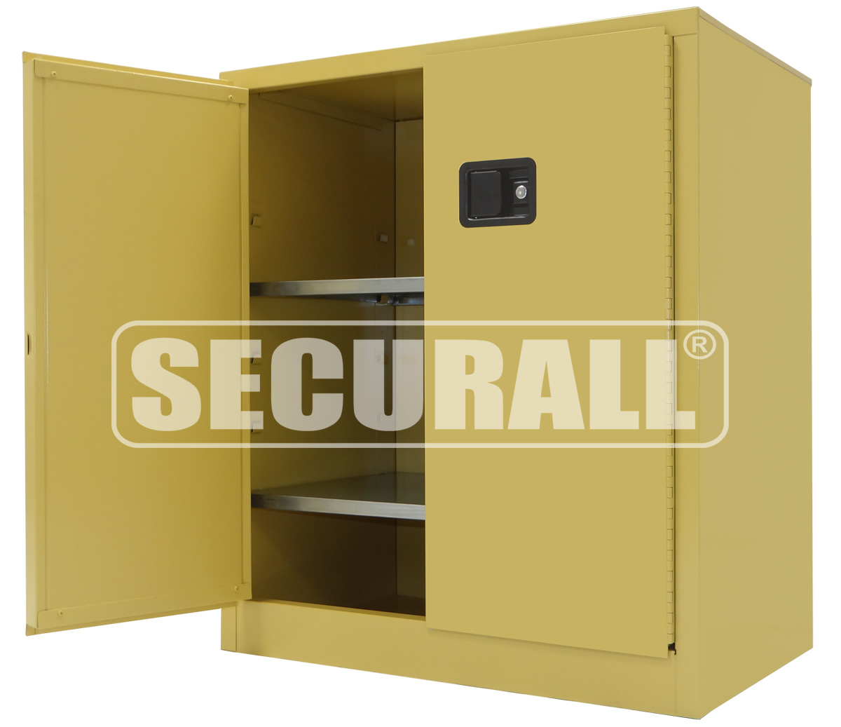 SS242   INDUSTRIAL STORAGE CABINET