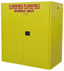 Hazardous Waste Storage Cabinets [Drum & Cans]